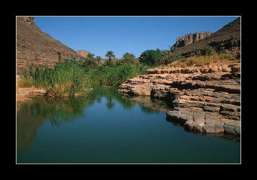 l'oasis d'Iherir